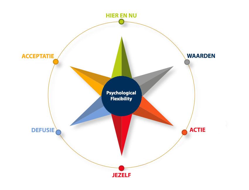 UFIND | de 6 pijlers van de Acceptance en commitment theory